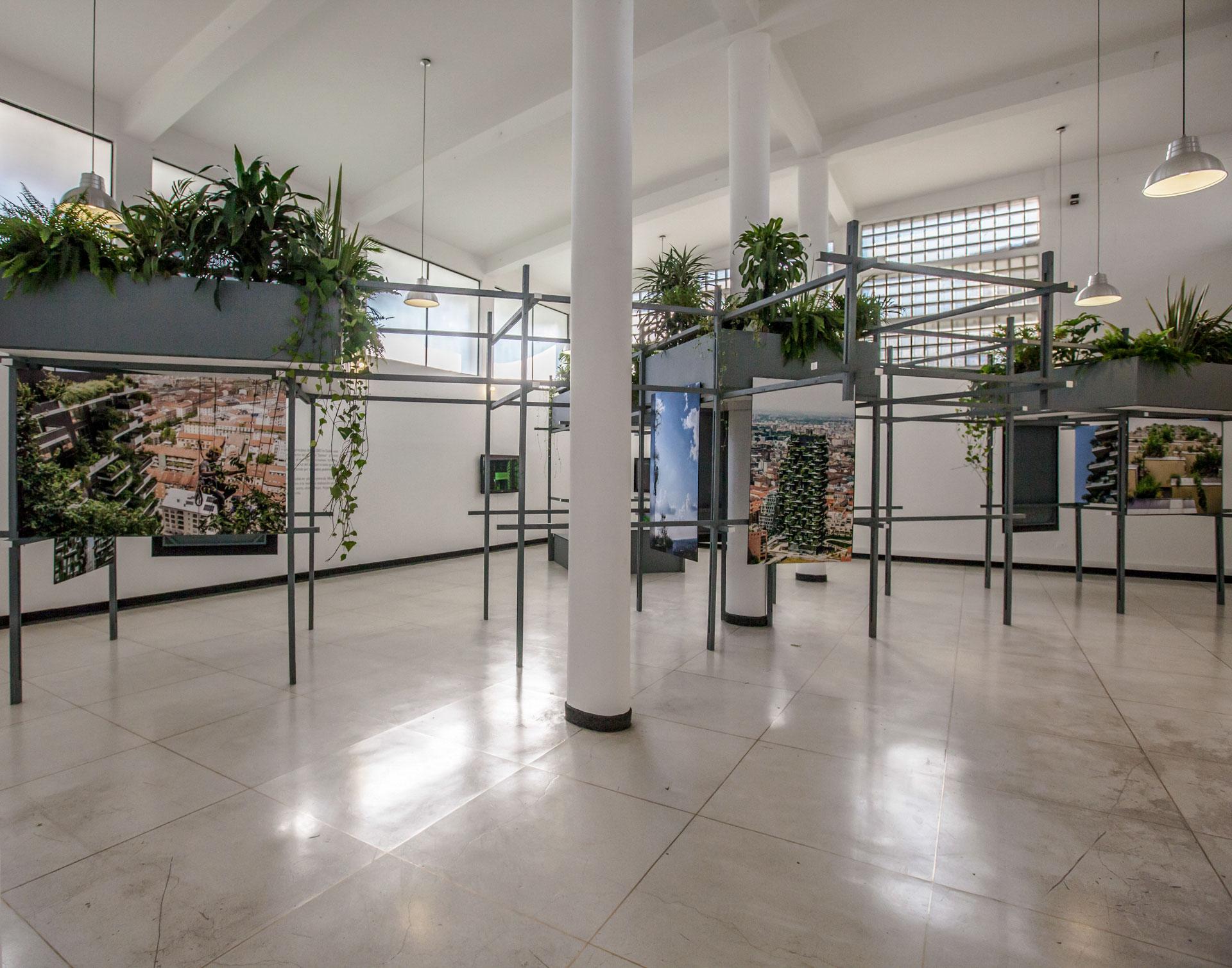 """Instalación """"Una mirada al Bosque Vertical"""" Museo Leopoldo Rother 2018"""
