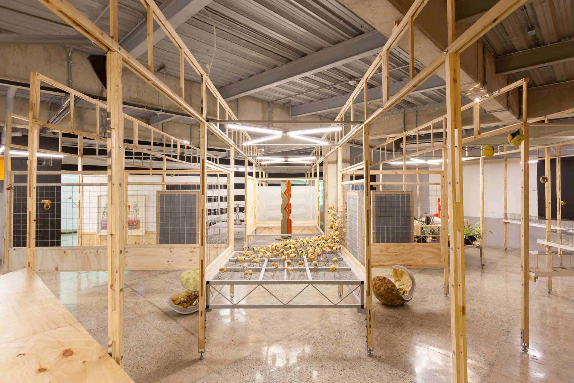 Instalación «La Forma del Futuro» Museo La Tertulia Cali 2017